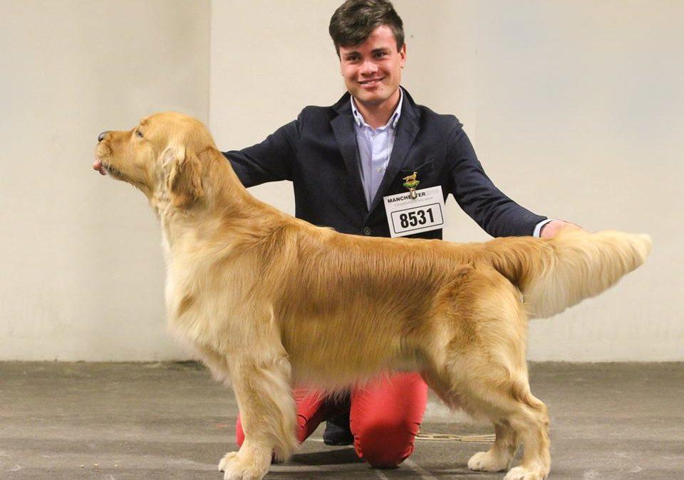 Manchester Championship Dog Show (UK)