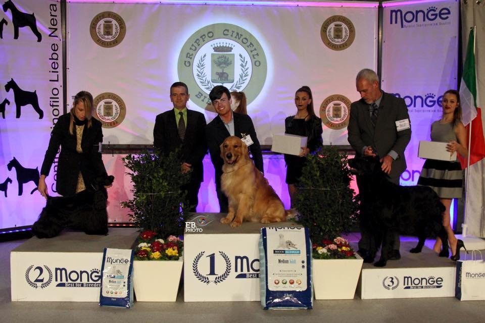 International Dog Show Biella