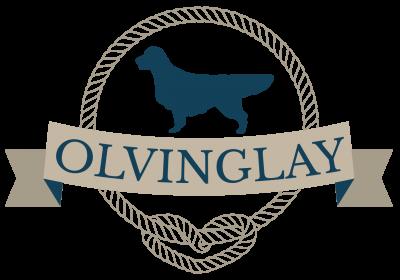 Olvinglay