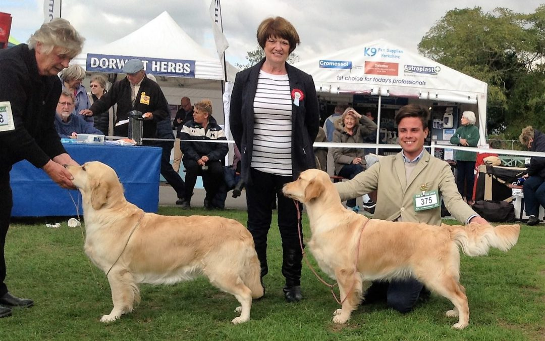 Gundog Society of Wales
