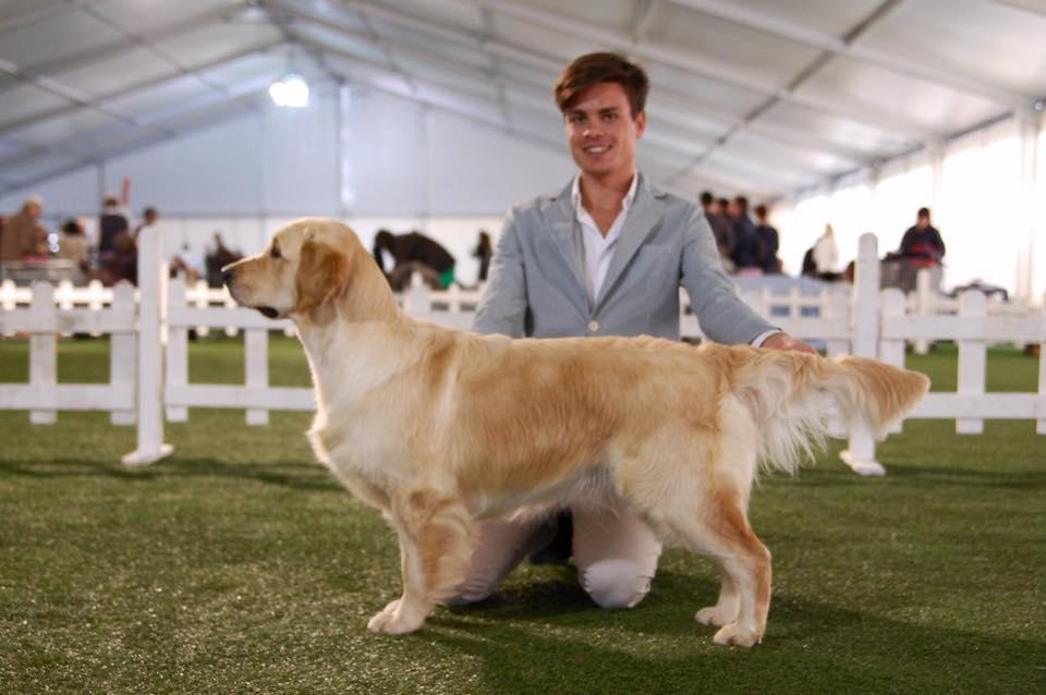 Desio International Dog Show