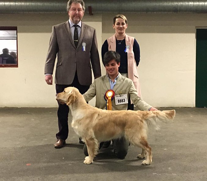 Manchester Championship Dog Show