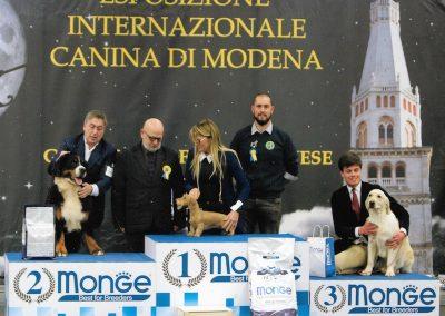 Vogue BIS Modena