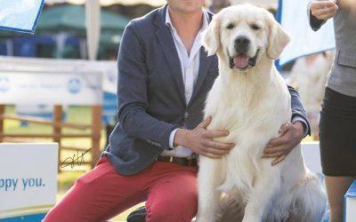 International Dog Show Palermo