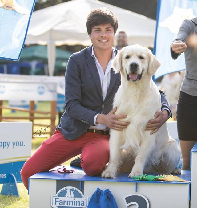 International Dog Show Palermo