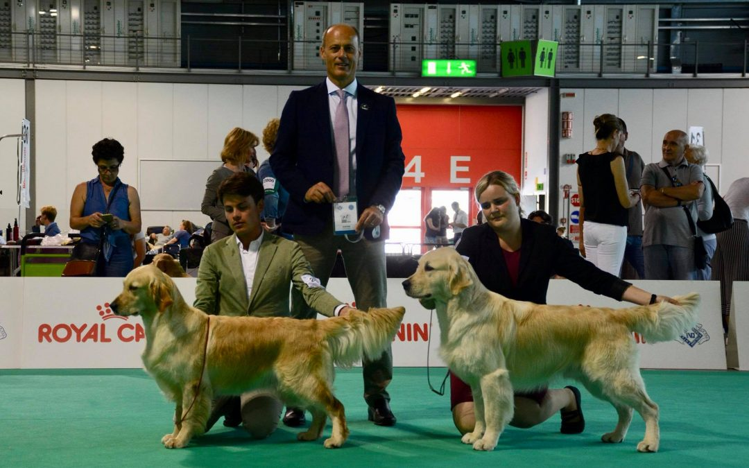 RCI All Retrievers Club Show Milan