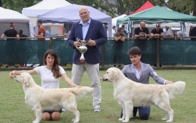 National Dog Show Monza – Challenge Corona Ferrea