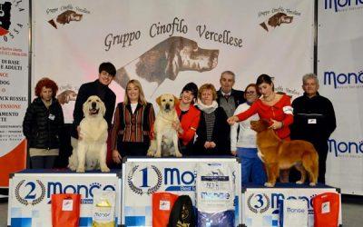 International Dog Show Vercelli