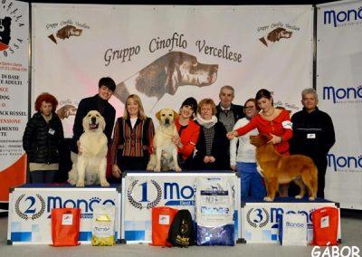 Group Vercelli