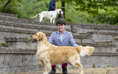 International Dog Show Ercolano
