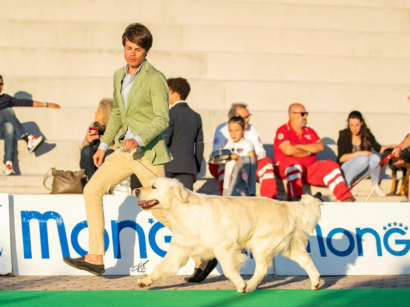 International Dog Show Empoli