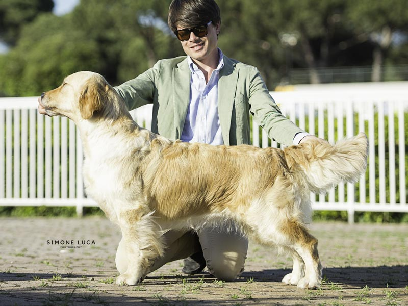 National Dog Show Vicenza