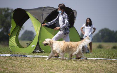 Double International Dog Show Alessandria